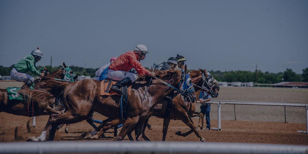 Best Horse Racing Betting Apps
