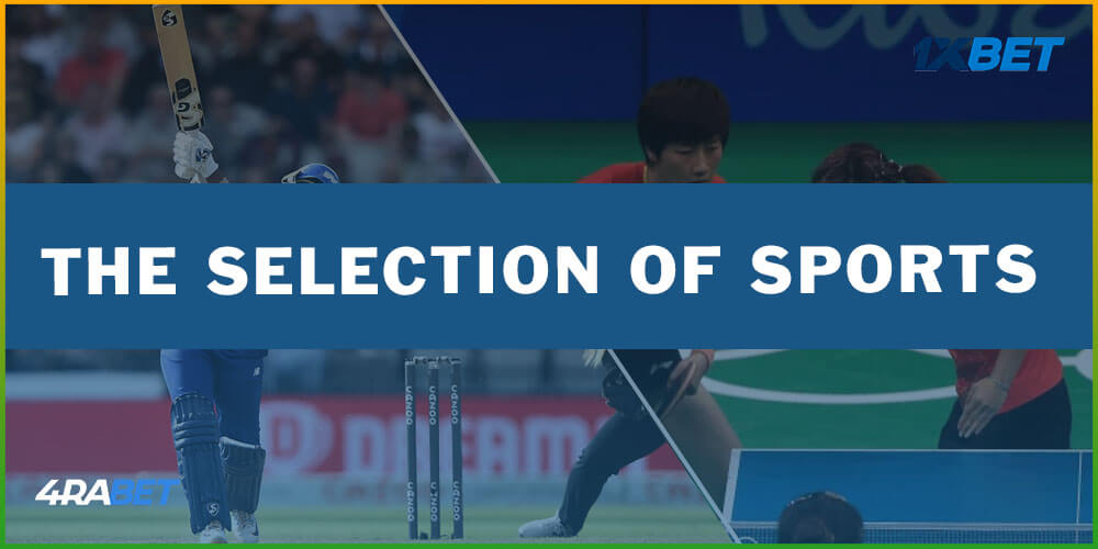 The Selection Of Sports