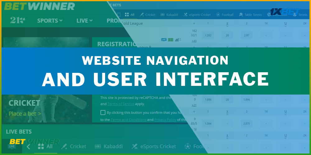 Website Navigation and User Interface